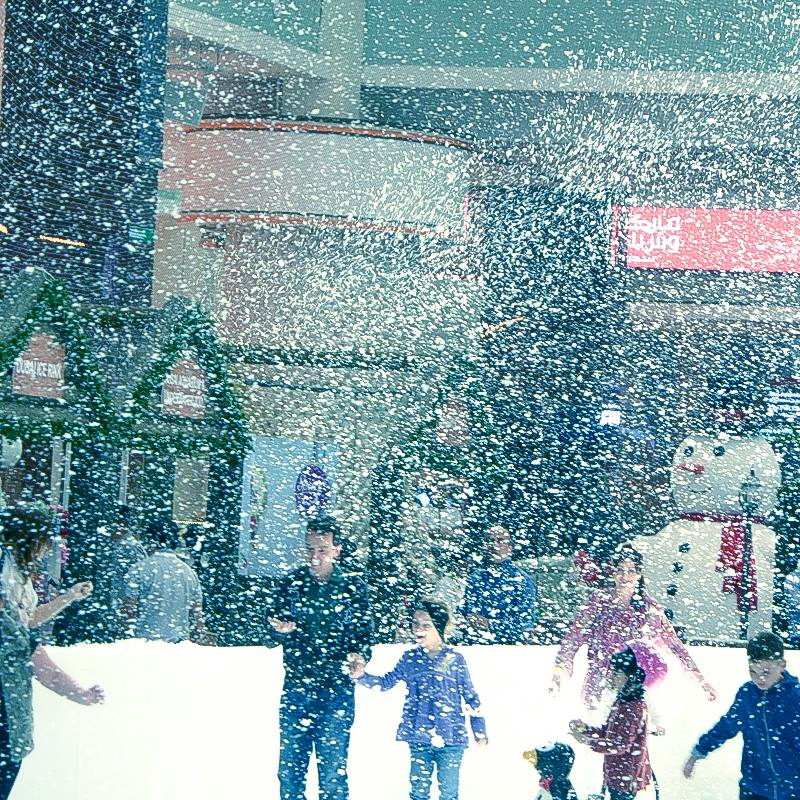 Image result for The Dubai Ice Rink